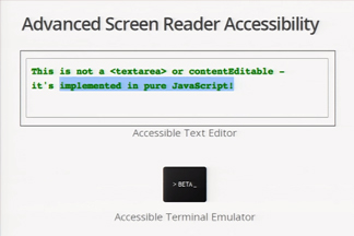 interface of an accessibility tool