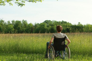 person in wheelchair with back turned looking out towards field of grass