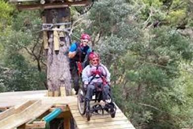 wheelchair user enjoying leisure activity in nature