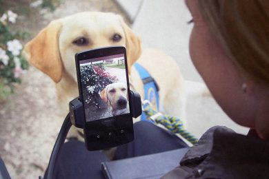 User interacting with the new feature of Voice Access to take a photo of her dog
