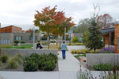 people enjoying the exterior of an outdoor garden area with paths and seating