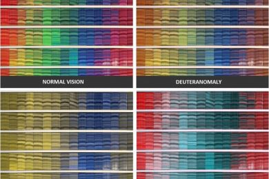 A comparison of the colors one sees with normal vision, Deuteranomaly, Protanopia and Tritanopia